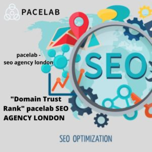 """Domain Trust Rank"" pacelab SEO AGENCY LONDON"