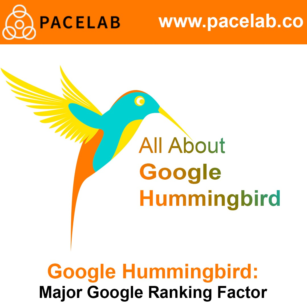 """Google Hummingbird"" pacelab - seo agency london"