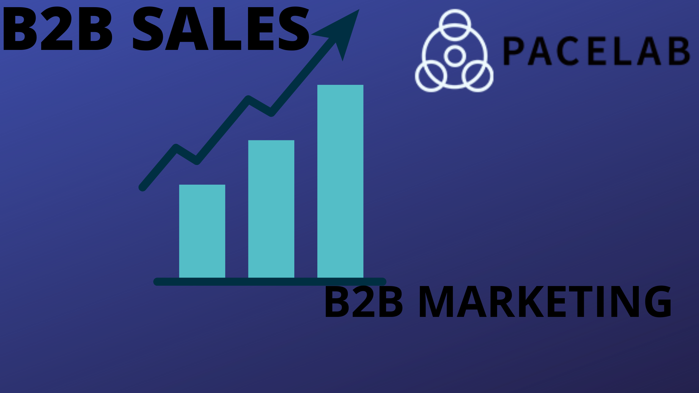"""B2B SALES- Pacelab SEO Agency London"""