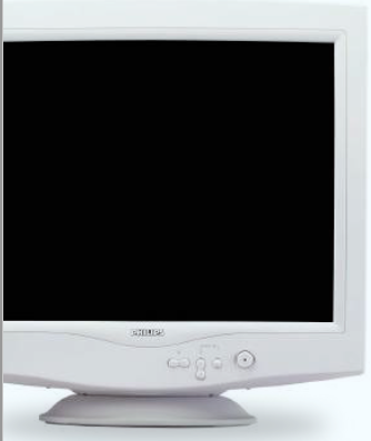 Website Design Basics - Screens